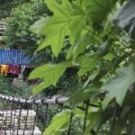 pont népalais